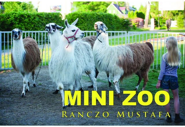 Ranczo MUSTAFA Bobolin mini zoo