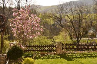 Willa ARKADIA Karpacz Magnolia i widok na Kowarski Grzbiet