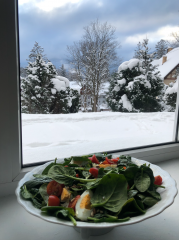 Willa DĄBRÓWKA Karpacz (s)pokój ze śniadaniem