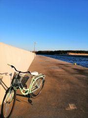 Domki i Pokoje PLAŻA KLUB Dziwnów wypożyczamy rowery