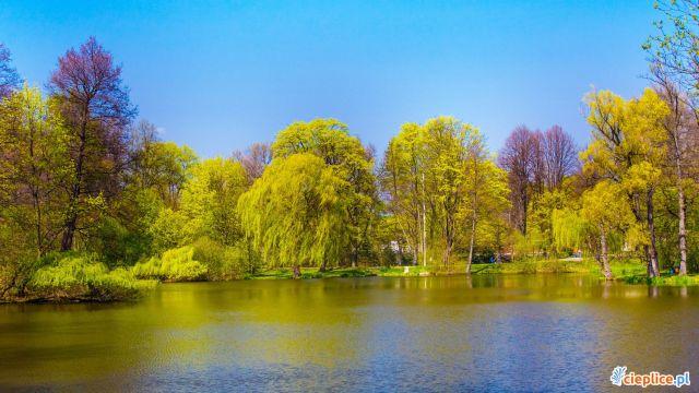 Dom Św. Stefana Cieplice Cieplice - Park Norweski