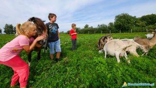 Agroturystyka i Domki POD SŁOŃCEM Karwieńskie Błoto Pierwsze